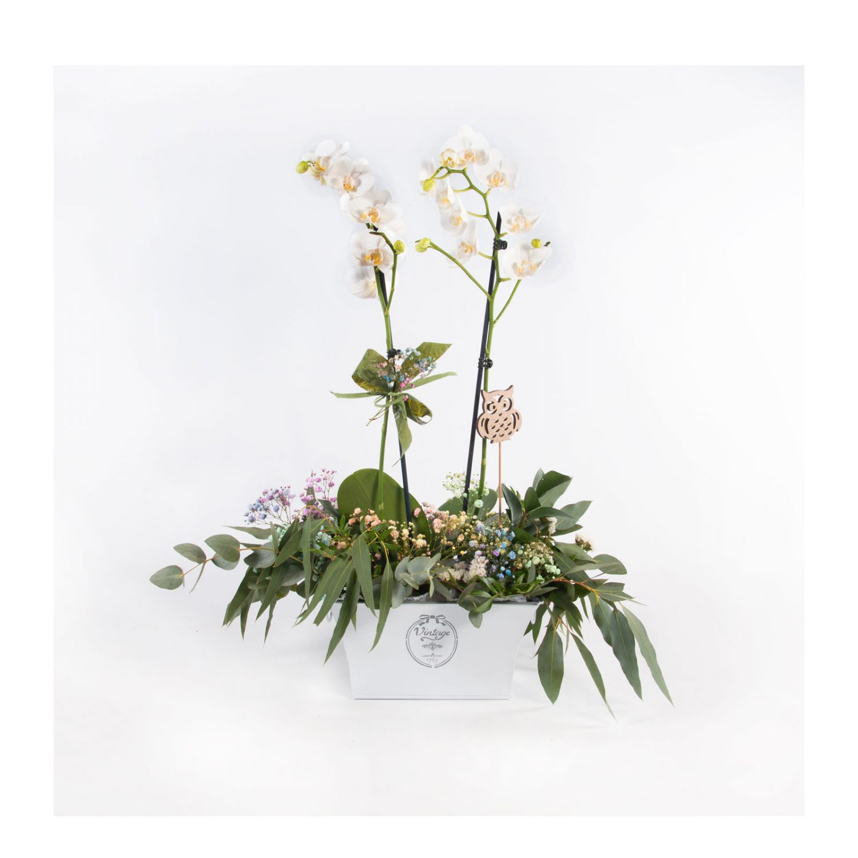Arreglo con orquidea y flores