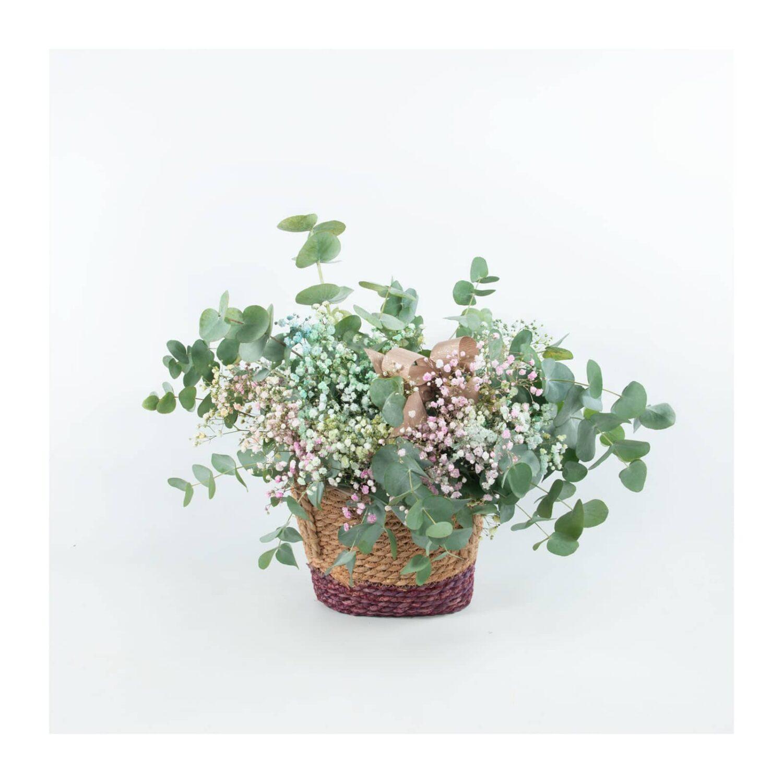 Capazo Eucalipto y Paniculata de colores